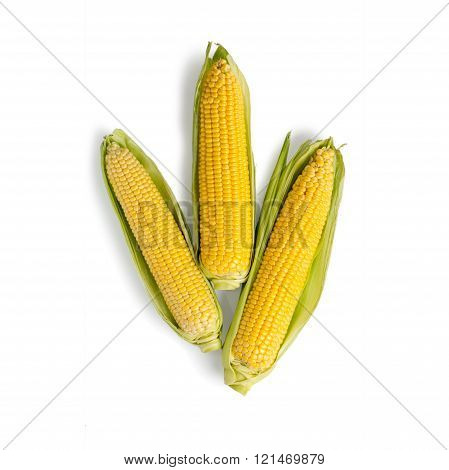 Fresh corn with green leaves isolated on white background