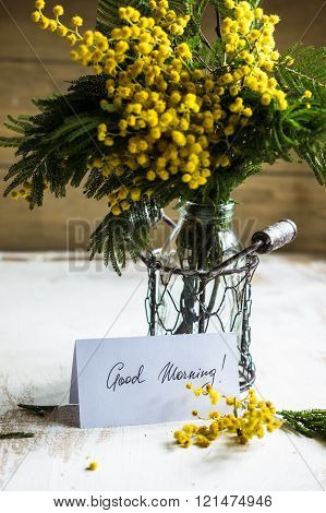 Bright yellow mimosa flowers in a vase on old rustic wooden table and good morning note