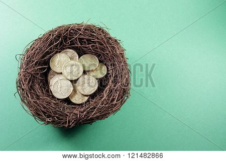 Bird's Nest With Coins
