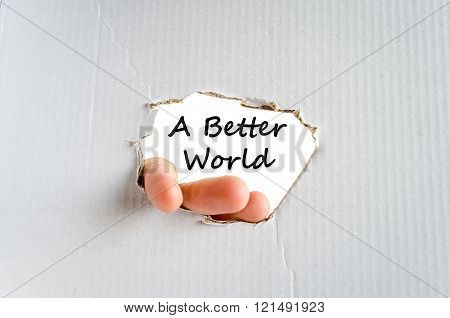A better world text concept isolated over white background