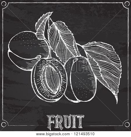 apricots chalk drawing
