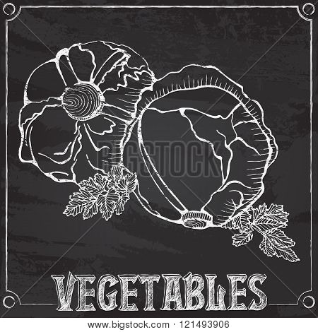 chalk vector drawing of cabbages
