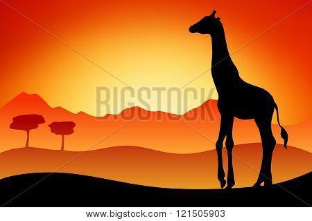 Giraffe silhouette savanna landscape nature sunset sunrise illustration vector