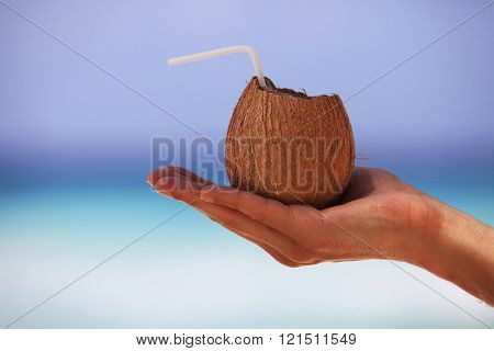 Coconut In A Man's Hand