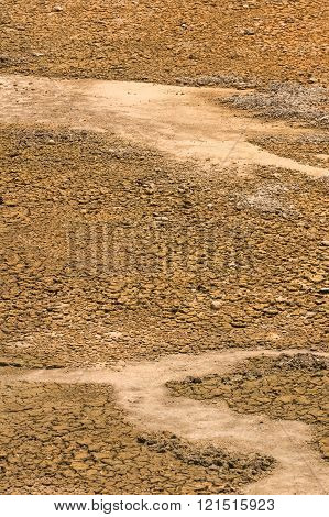 Dry Land In Drought Crisis