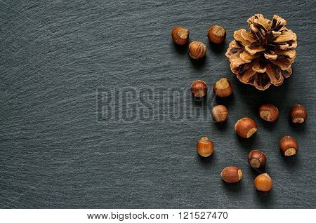 Top view of pine cone and hazel nuts on black slate stone background with copy space