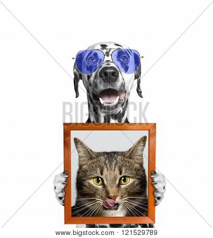 Dog In Glasses Holds A Portrait Of Cat In Its Paws