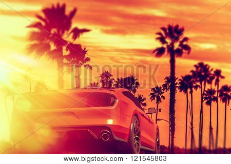 Exotic Car Palm Beach Ride