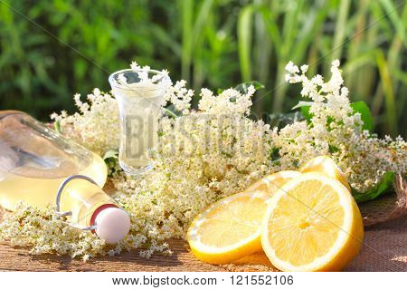 Elderflower liqueur tasting