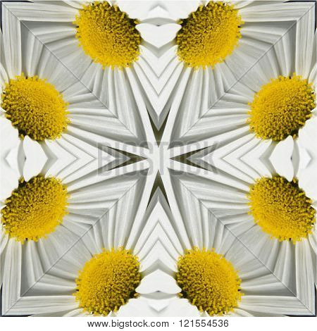 kaleidoscope square texture pattern symmetry background abstract abstraction textured repetitive geometric whit, yellow daisy