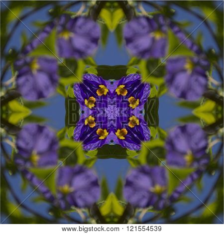 kaleidoscope square texture pattern symmetry background abstract abstraction textured repetitive geometric purple flower