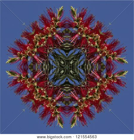 kaleidoscope square texture pattern symmetry background abstract abstraction textured repetitive geometric red flower