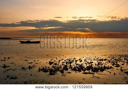Marine Landscape With Boat, In France (camargue)