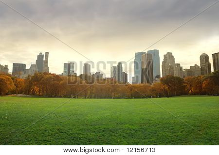 view of new york buildings from central park