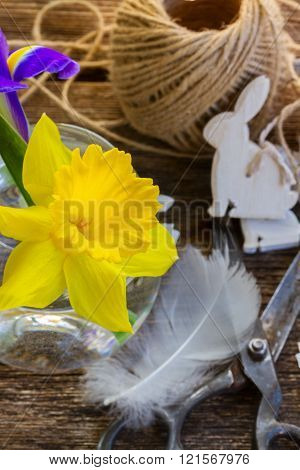easter daffodil and rabbits