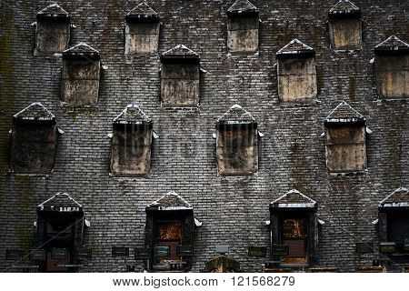 Many windows on the roof