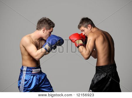 boxers competition