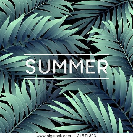 Summer tropical background of palm leaves. Tropical palm leaves. Tropical summer design. Background