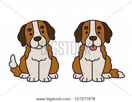Cute Saint Bernard Puppy