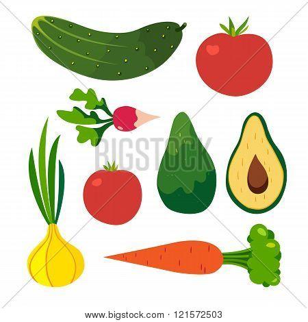 Vegetables vector set. Cucumber carrot onion tomato radish avocado.