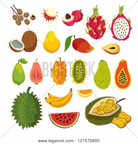 Exotic tropical fruits vector set. Juicy and ripe fruit: papaya guava mango cartoon vector