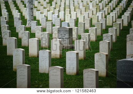 Grave stones in a row