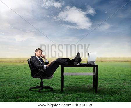 Businessman At Telephone Sitting At A Desk On A Green Meadow