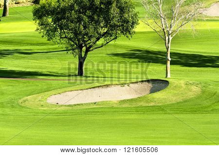 Early morning sunlight brings out the vibrant green colors of a golf course and sand trap surrounded by lush foliage.
