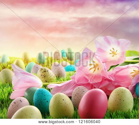 Easter eggs with pink tulips in the grass