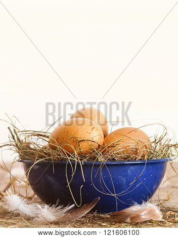 Easter eggs in blue bowl with straw and feathers