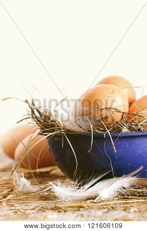 Brown farm eggs in blue bowl with straw