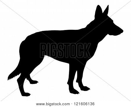 Standing pose of a German Shepherd Silhouette