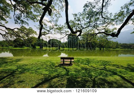 An empty chair facing Taiping Lake in the afternoon