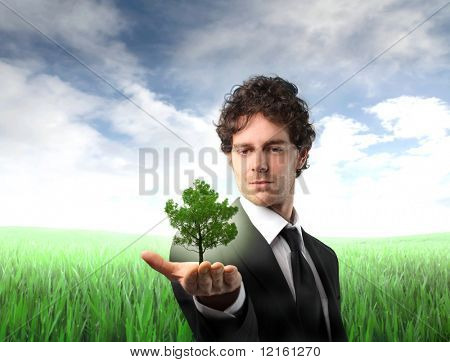 Businessman holding a tree in his hand with green meadow on the background