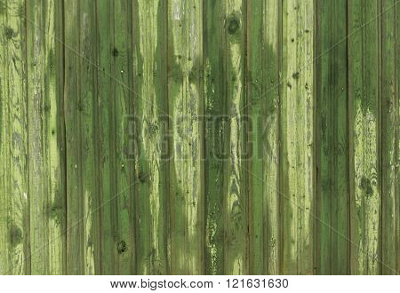 Wet Grungy Green Wooden Fence Texture.