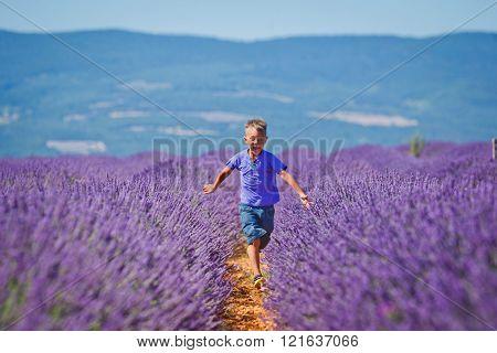 Boy in lavender summer field