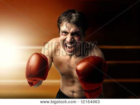 Boxer agressivo em um anel