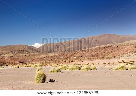South America  - The surreal landscape in the beautiful Andes in Bolivia