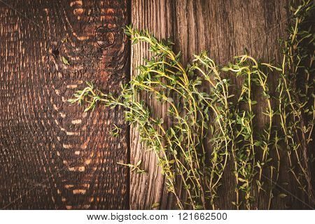 Thyme sprigs on the old wooden background
