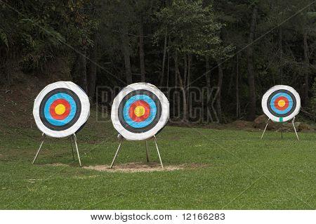 blancos de tiro con arco en los prados