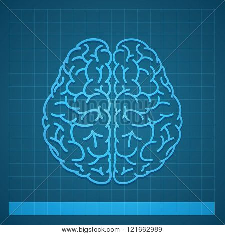 Human Brain Concept on Blue Background
