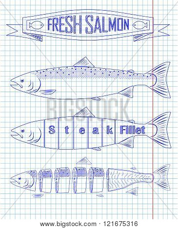 Three Fresh Salmon From The Scheme