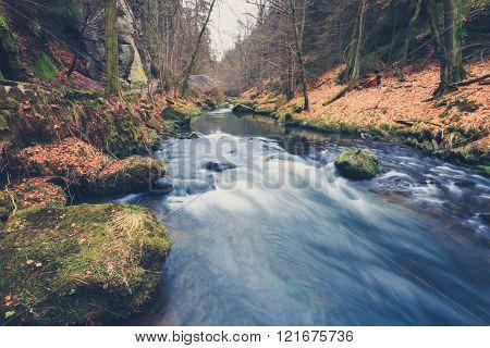 River In Forest Landscape During Autumn, Vintage Filtered