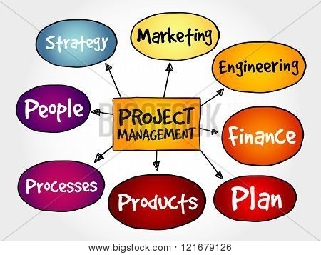 Project management mind map business concept, presentation background