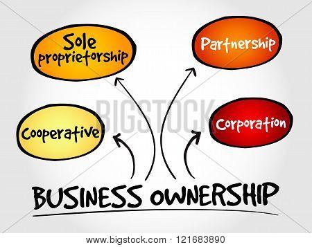 Business ownership mind map concept, presentation background