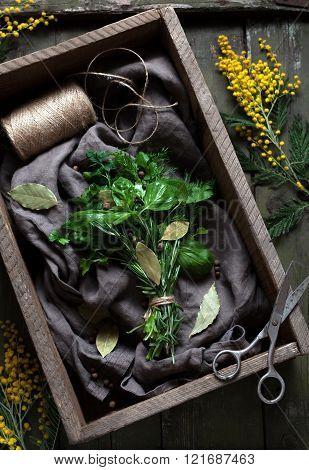 Fresh spring garni bouquet herbs seasoning bunch with scissors