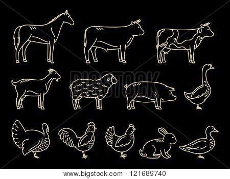 Vector Thin Line Farm Animals Icons Collection