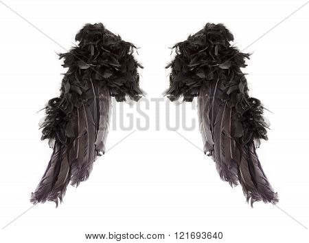Dark angel wings isolated on white background.
