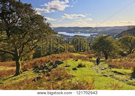 Walking Above Windermere