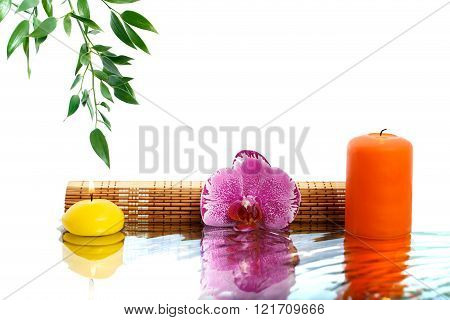 Orchid, Fragrant Candles And Eucalyptus Branch Reflected In Water